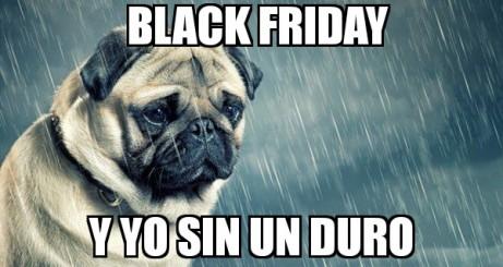 Black Friday memes de animales III