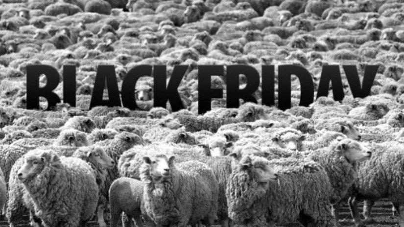 Black Friday memes de animales VIIIII