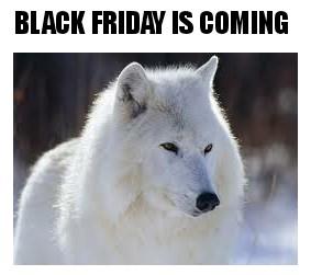Black Friday memes de animales V