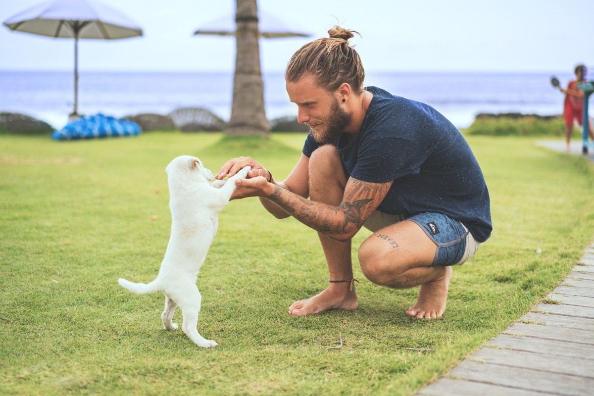 ¿Te atreves a tatuarte el ladrido de tu perro?