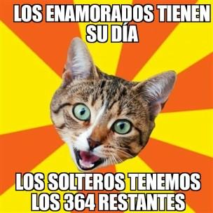 Solteros gatos