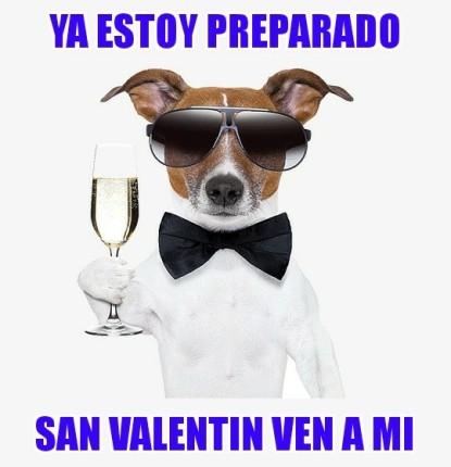 memes de animales perro valentin