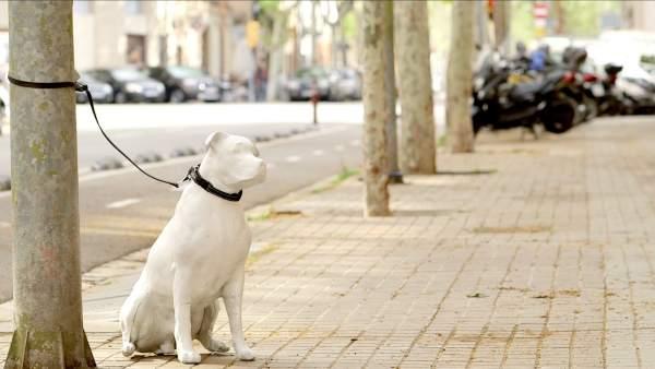 barcelon perros estatuas de impresion 3d animales