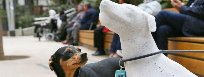 perros de barcelona en estatuas