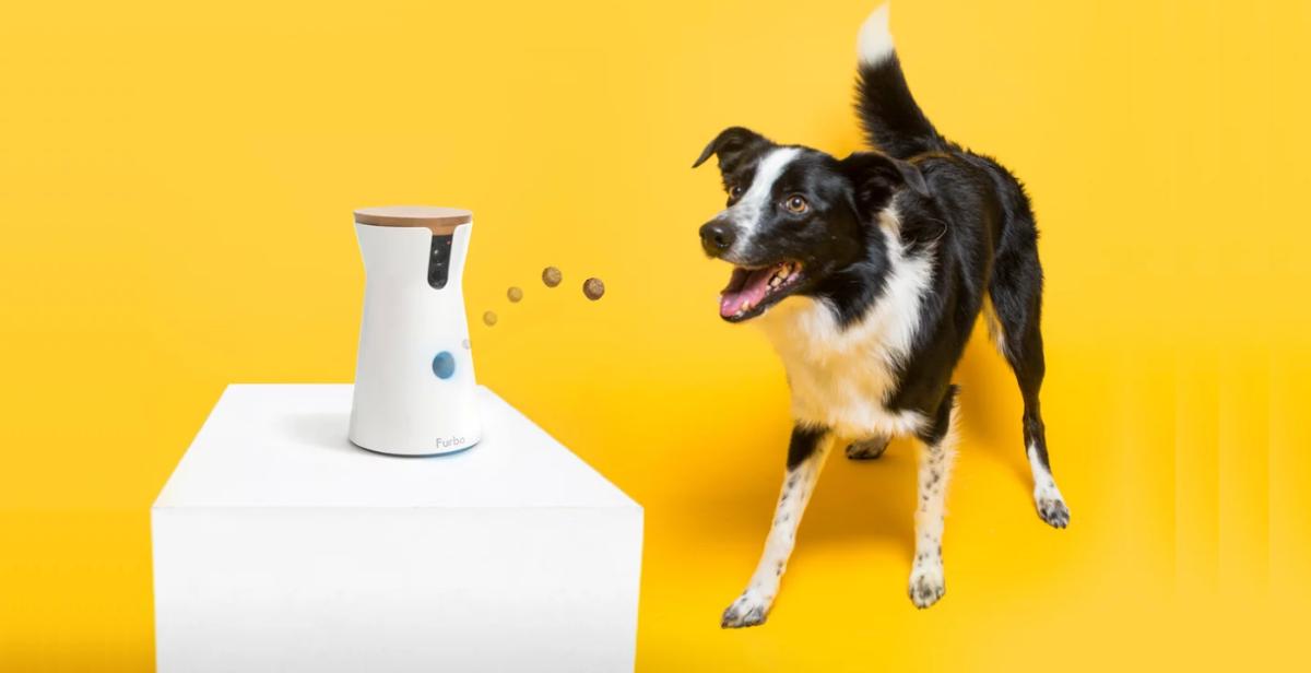 Furbo, una cámara inteligente para perros que te dejará alucinado