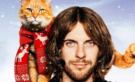 Peliculas de animales, peliculas de gatos. Bob un gato callejero.