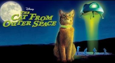 Peliculas de animales, peliculas de gatos. El gato que vino desde el espacio.