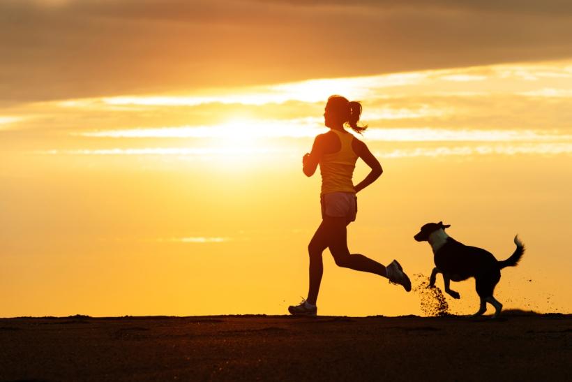 practicar running perro