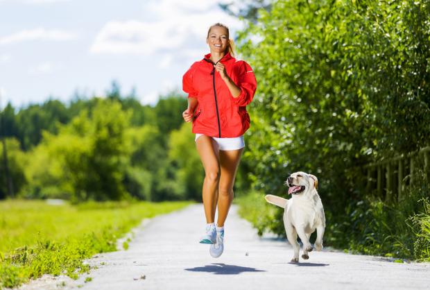 Running perros