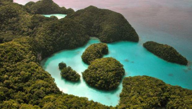 Lago de las medusas - mascotaamiga